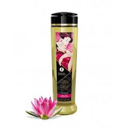 Shunga - Massage Oil -...